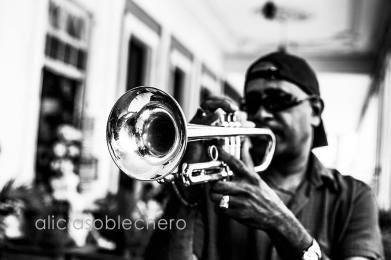 la habana trumpet