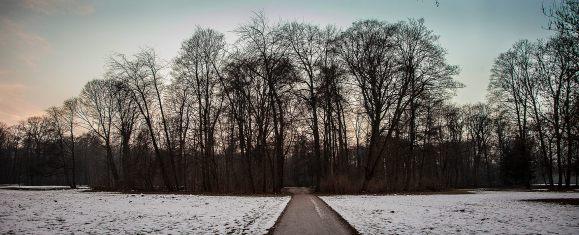 nieve en alicia soblechero fotografia viajes